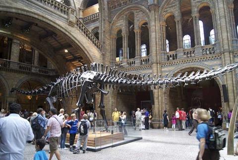 2010-07-05 - Natural History Museum (37) - Reduzida