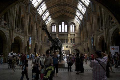2010-07-05 - Natural History Museum (38) - Reduzida