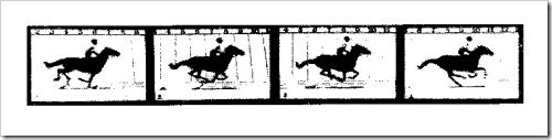 Muybridge - Animal Locomotion - 1860